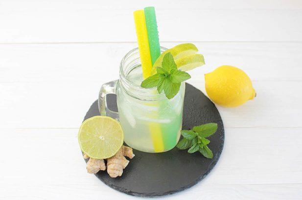 DIY Ginger Ale, Zuckerfreie Limonade, ohne Zucker, mit Xylit, Rezept Ginger Ale