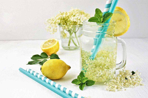 Rezept Holler Holunder Saft Sirup zuckerfrei mit Xylit