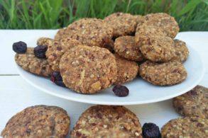 Kekse für Kinder, Gesunde Kekse, Zuckerfreie Kekse, Vegane Kekse, Energiekekse, Vitalkekse, zuckerfrei, vegan