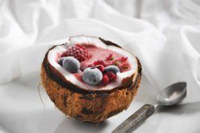 Eiscreme gesund, Beerencreme, Bananencreme, Healthy Icecream, zuckerfrei, ohne Zucker, Kokoscreme