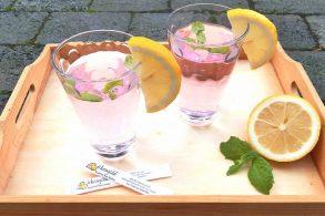 Erdbeerlimonade, Rhabarberlimonade, Sommerlimonade, DIY Limonade, Erdbeerdrink, Rhabarberdrink, selber machen, zuckerfrei