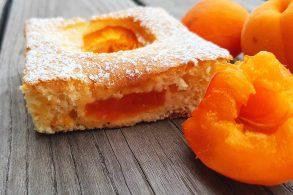 Marillenkuchen, Aprikosenkuchen, Marillen Kuchen, Aprikosen Kuchen