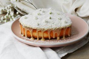 Kokos-Cheesecake, Cheesecake mit Kokos
