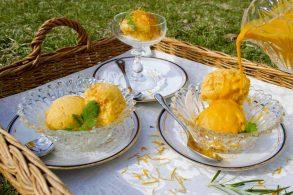 Sanddorn Eis ohne Zucker, Sanddorn Eis mit Birkenzucker, Sanddorn-Melonen Eis zuckerfrei